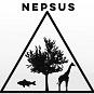 NEPSUS logo