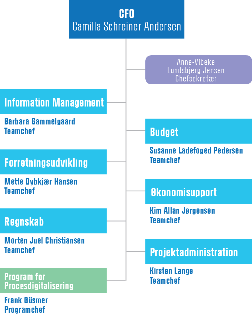 Organisationsdiagram for Økonomi og Analyse