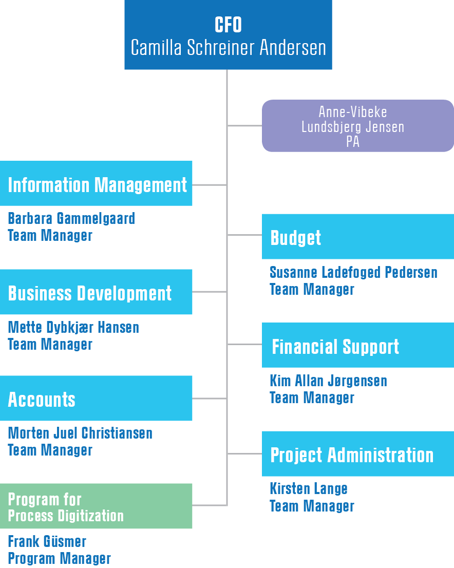 Financial Analysis Organisation Chart