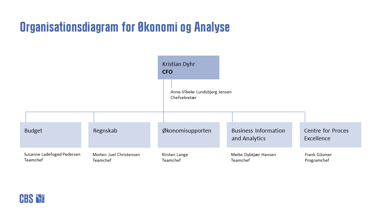 Organisationsdiagram for Økonomi & Analyse