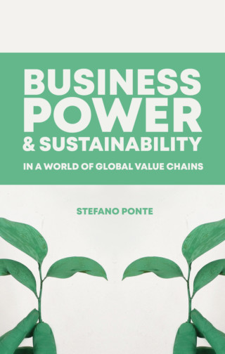 Business Power and Sustainability in a World of Global Value Chains