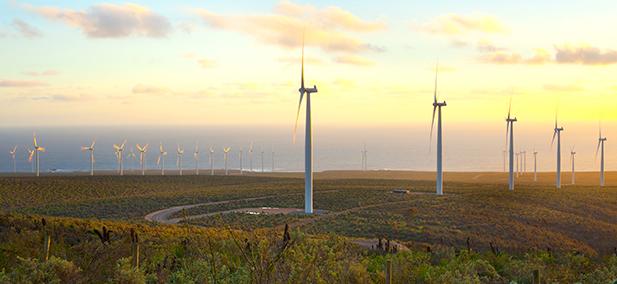 Sustainability Chile