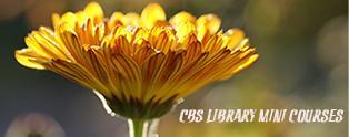 Minikurser på CBS Bibliotek