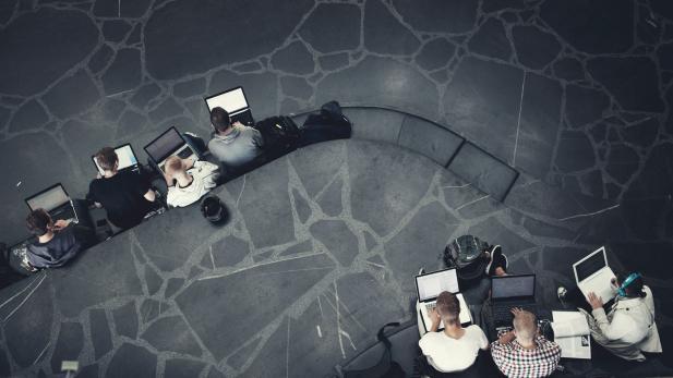Bachelor of Commerce grad København pleje Danmark