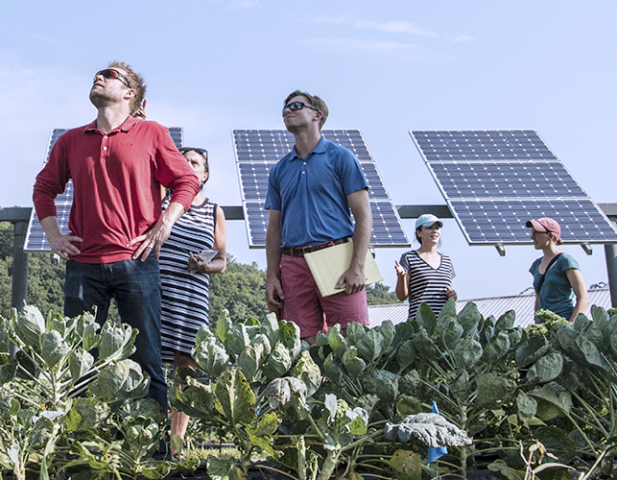 People in a field of green with solar panels