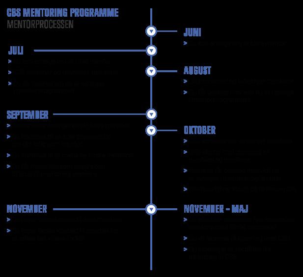 CBS Mentoring Programme proces