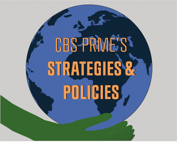 prme_strategies