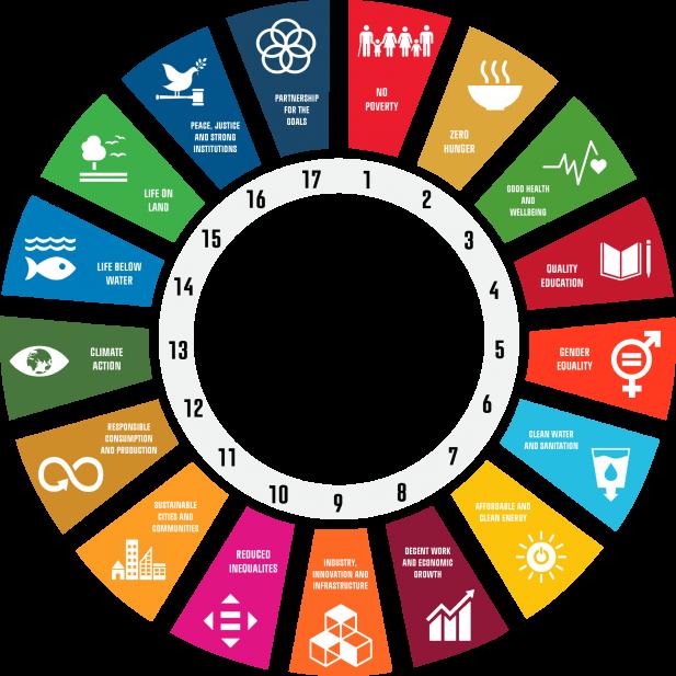 UN SDG Circle