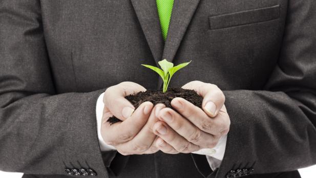 sustainable_business.jpg