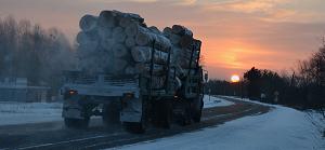 Truck filled with oak logs in Russia Far East